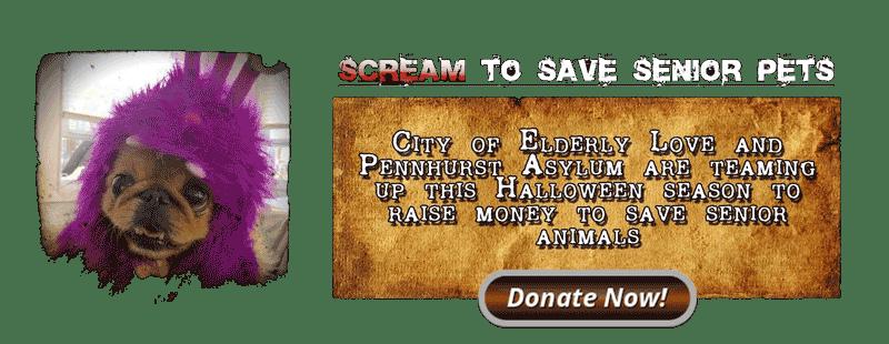 pennhurst_charity1