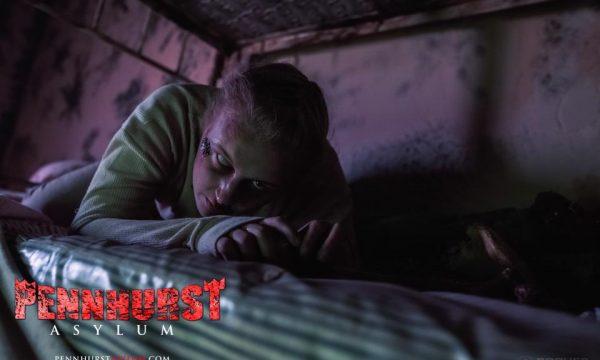 bed-creeper